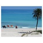 Tunisia (primo viaggio) – [5+4]